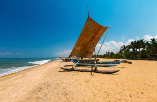 BEACH IN NEGOMBO copy